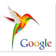 Colibrì: il nuovo algoritmo di Google