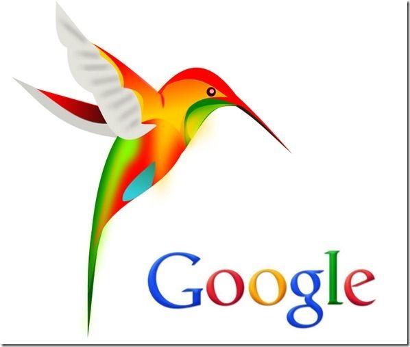 colibri nuovo algoritmo Google