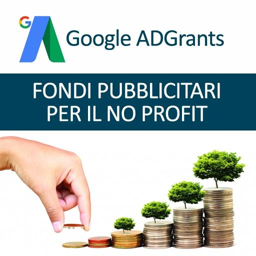 programma google adgrants