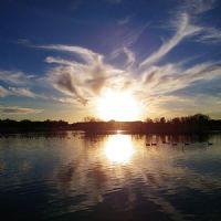 tramonto con oche canadesi